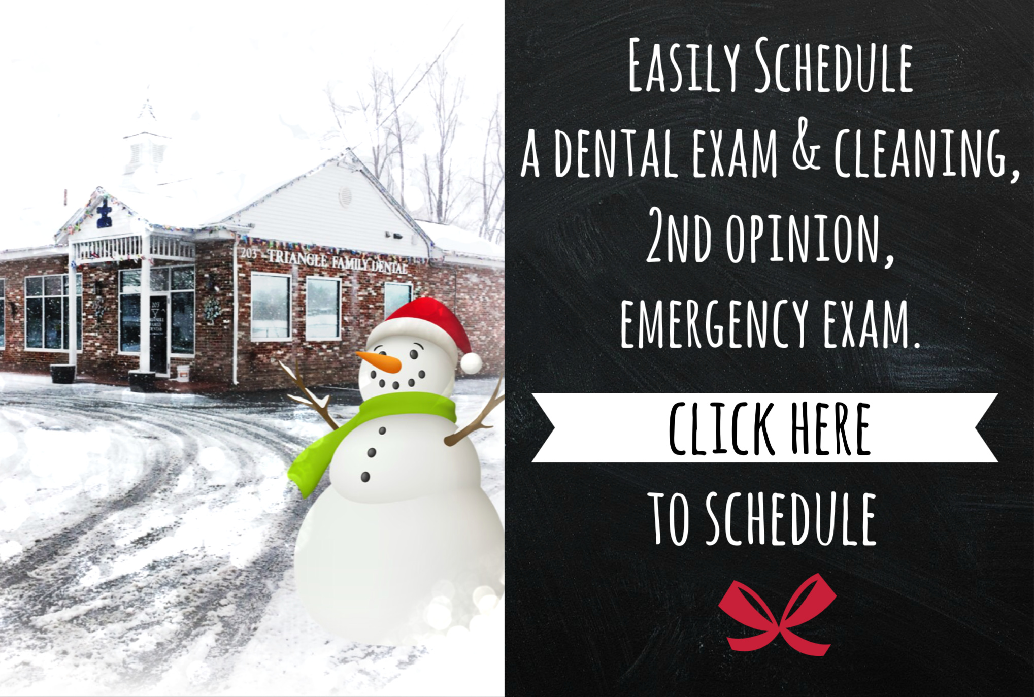 UMass Amherst Dentist